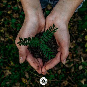 8 Dicas Ecológicas para melhorar a vida no Planeta Terra